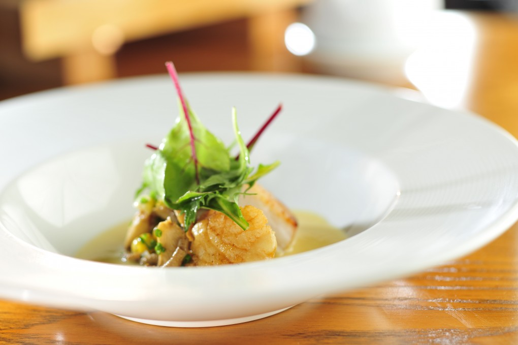 nobu_pan_seared_scallop_maitake_mushroom_corn_miso_broth_518865